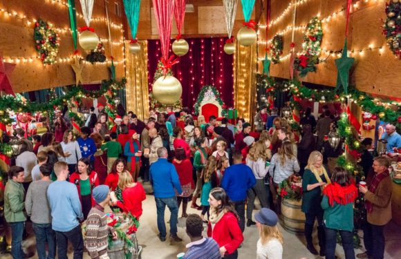 Natale a Evergreen – La lettera perduta prima tv su Rai 2 trama, cast, finale